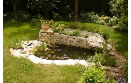 Bassin - piscine